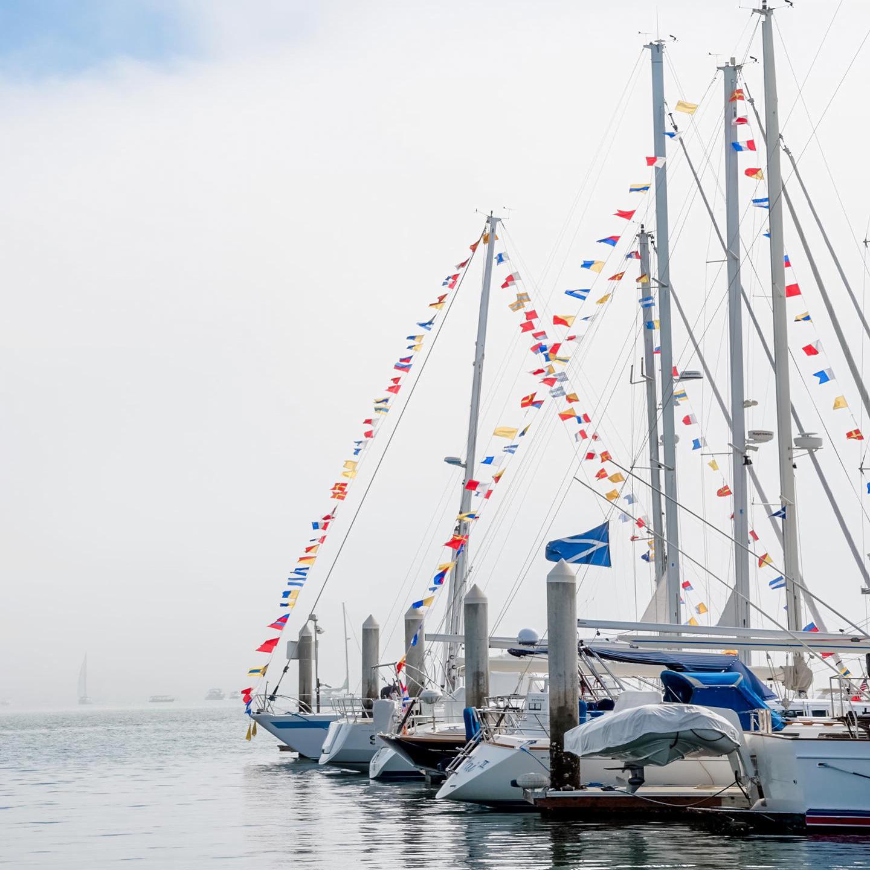 美國遊艇俱樂部遊艇-美國疫苗行程